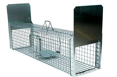 Zielonalapka Strong Super Fuerte Trampa tamaño 120 x 34 x 34 cm Trampa para martas Gato Zorro Animales Alambre Perros tejones nutrias con Extra Cebo: ...