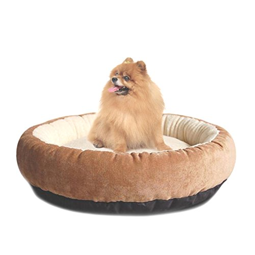41WlWOELAeL - Casablanca Round Solid Dog Beds Pet Round Bed For Cats & Dogs Bite-resistant
