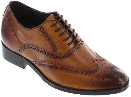 Toto-a2621C-7,6cm Grande Taille-Hauteur Augmenter Chaussures ascenseur-Robe Marron Chaussures