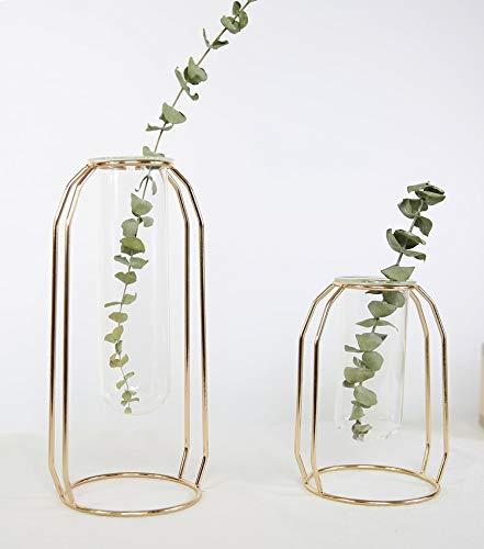 Simple Modern Metal Flower Stand Test Tube Transparent Glass Vase Creative Home Floral hydroponic Flower Arrangement Decoration