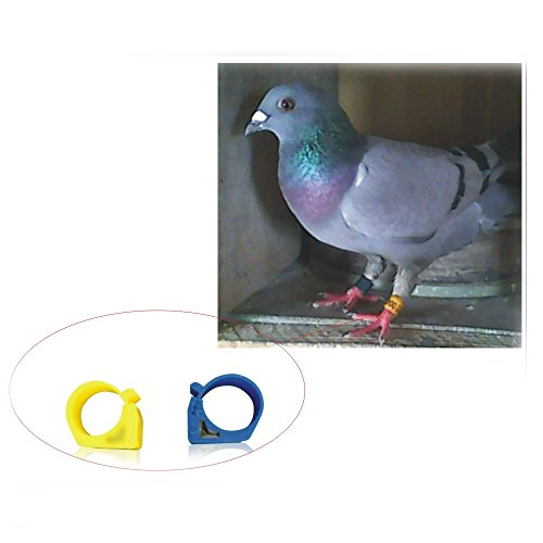 125KHZ reader +10pcs Bird Clip on Leg Rings 9mm Foot Ring Bands for Pigeon  Dove Chicks Bantam Quail Lovebirds Finch Small Poultry Chicken (Mixed