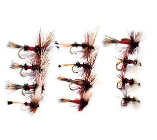 (Outdoor Planet Dry Fly 12 Royal Coachman/Wulff/Humpy/Renegade Fly Lure Assotment for Trout Fly Fishing Flies)