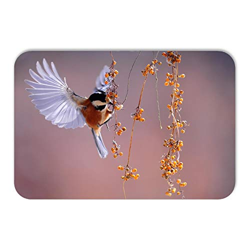 Kitchen Floor Toilet Bath Mat Rug,Bird Wings Fluttering Nature Animal Berries Theme,Soft Super Absorbent Flannel Luxury Bathroom Decor Mat with Non Slip Backing,24W×36L Inches