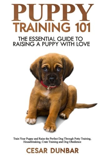 the steps to raising a puppy or dog Check out important nutrition tips to keep your puppy, adult dog or senior dog healthy read more  the aspca is a 501(c)(3) non-for-profit organization.