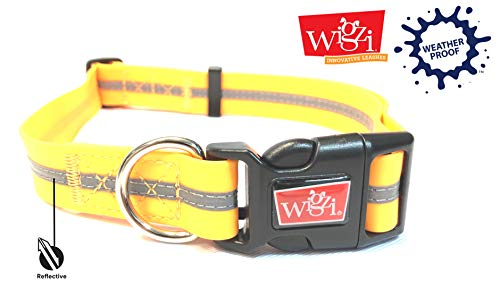 Reflective, Waterproof, Stink Free, Adjustable and Durable Collar For Dogs - 2 Year Warranty- Neon Orange, Medium Size