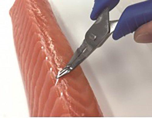 Asahi Industry -Stainless, Fish Bone Tweezers III by Asahi Industry (Image #3)