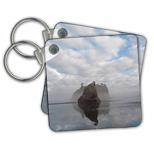 Red Summer Stack (Danita Delimont - Beaches - Usa, Washington, Olympic NP. Morning mist on sea stacks and Ruby Beach - Key Chains - set of 4 Key Chains (kc_260495_2))