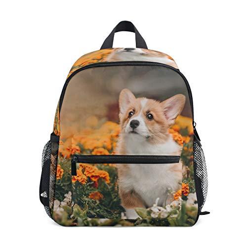 Dog Pattern Backpacks for Girls Boys Kids School Bag Supplies Little Corgi Pembroke Puppy Adventures Flowers Waterproof Cute Bookbags Elementary School Bags for 1th- 6th Grade (Pembroke Puppy Corgi)