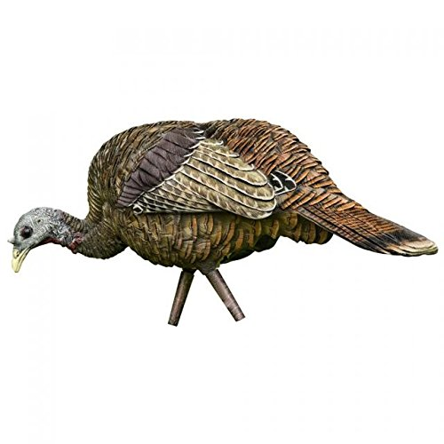 (Avian-X Feeder Hen Turkey Decoy,  Lifelike Collapsible Decoy With Carbon Stake and Carry)
