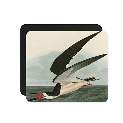 (Black Skimmer (Audubon) Computer Laptop Gaming Mouse Pad)