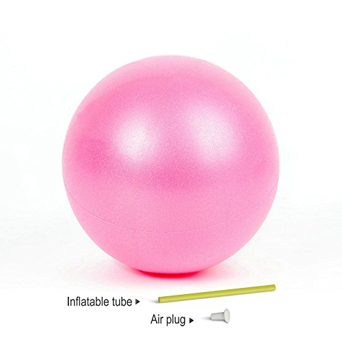 Mini Yoga Pilates Ball 9-10 Inch for Stability Exercise Training Gym Anti Burst and Slip Resistant Balls With Inflatable Straw (Pink)