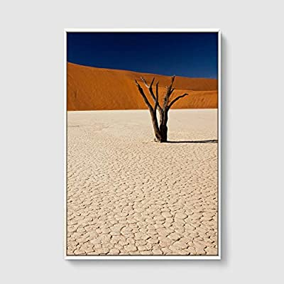 Framed Home Artwork Desert for Living Room Bedroom 16