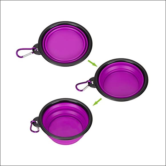 IDEGG Collapsible Silicone Pet Bowl,set of 2, Food Grade Silicone BPA Free, Foldable Expandable Cup Dish for Pet Raised Dog/Cat Food Water Feeding Portable camping Bowl (Set of 2, Purple+Green)