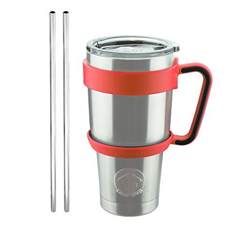 Stainless Steel Tumbler with Handle, 2 Stainless Steel St...