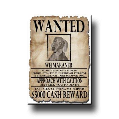 (Weimaraner Wanted Poster Fridge Magnet)