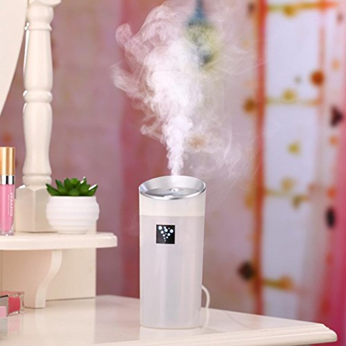 Leegor 300 Ml Large Capacity Lightweight Car Family Use USB Fragrance Anion Humidifier Air Purifier Sterilization Dust Air Freshener (White)