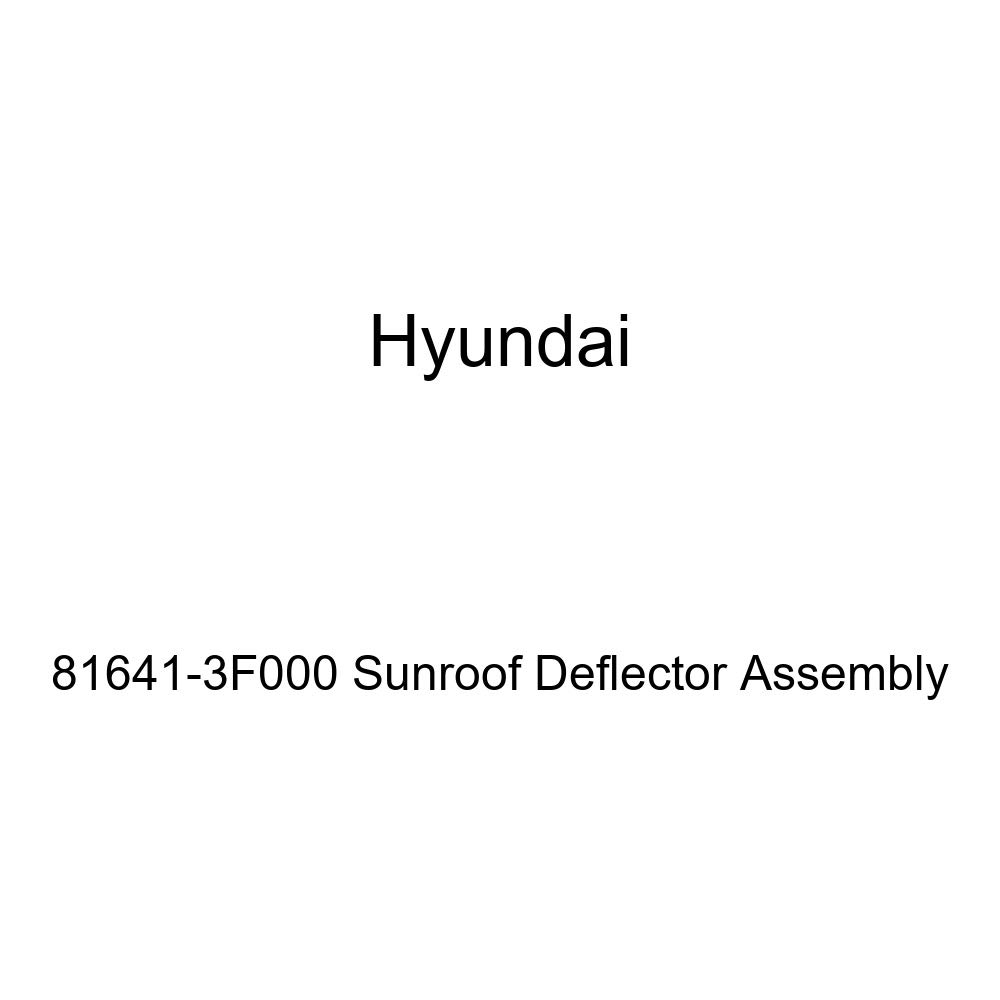 Genuine Hyundai 81641-3F000 Sunroof Deflector Assembly