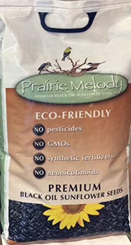 (Prairie Melody(TM) Premium Black Oil Sunflower Bird Seed, Pesticide Free, 12-Pound Bag)