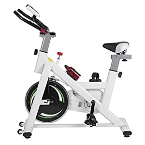 Lovelystar Health & Fitness Exercise Bike Indoor Cycling Ultra-Quiet Stationary Bicycle Home Sports Equipment with HD Display and Adjustable Seat