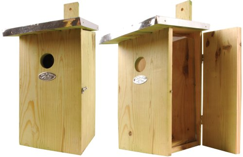 Esschert Design Observation Bird Nesting Box Review