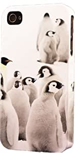 Baby Penguin Pack Plastic Snap On Flexible Decorative Apple iPhone 4/4s Case by runtopwell
