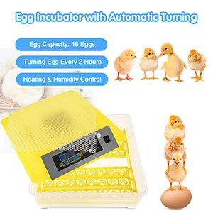 12 /œufs+LED Couveuse Incubateur 48 /œufs automatique Incubateur automatique Avec /éclairage LED