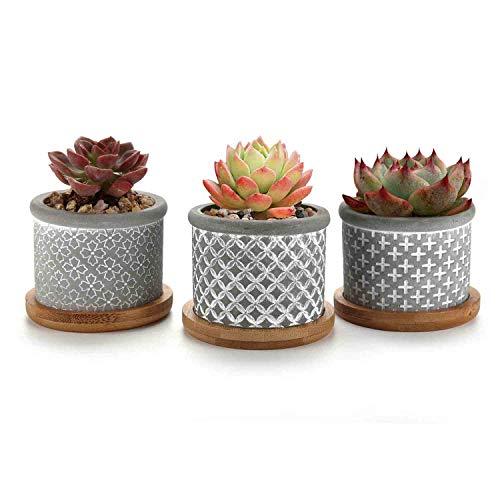 T4U 2.25-Inch Cement Grey Succulent Planter Pot with Drainage Tray, Concrete Succulent Mini Pot for Office Home Decoration, Set of 3