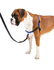 Ferplast Coach Dog Harness XL 40–53cm/76–115cm