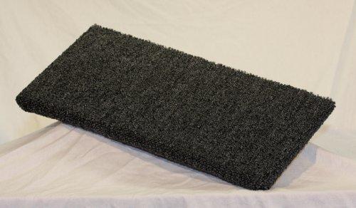 Carpeted Cat - 2