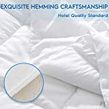 viewstar Queen Size Comforter, All-Season