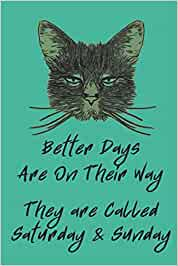 Better Days Are On Their Way - They Are Called Saturday & Sunday: Blank Notebook Journal Ruled 6x9 Gift For Those Cat Lovers