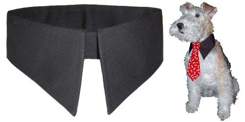 Calvin K-nine Shirt Collar for Dogs (Black, L) Fits 20″ – 23″ Neck, My Pet Supplies