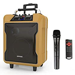 """EARISE M60 Portable PA System Work with Bluetooth, DJ Karaoke Amplified Loudspeaker with Wireless Microphone, 10"""" Subwoofer, Remote Control, Aux Input, Telescoping Handle, USB Charging & Wheels,Golden"""