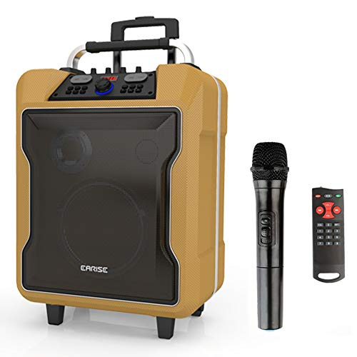 EARISE M60 Portable PA System Work with Bluetooth, DJ Karaoke Amplified Loudspeaker with Wireless Microphone, 10