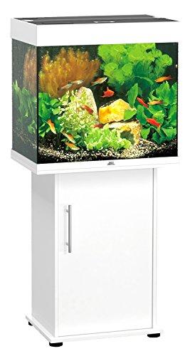 Meuble Aquarium Comparatif Des Meilleurs Mod Les Jardingue