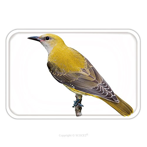 Flannel Microfiber Non-slip Rubber Backing Soft Absorbent Doormat Mat Rug Carpet Golden Oriole Juvenile Isolated On White Background 276639047 for Indoor/Outdoor/Bathroom/Kitchen/Workstations