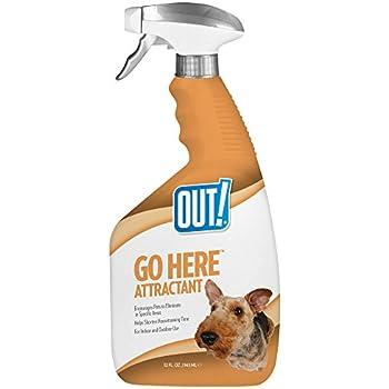 Homemade Dog Urine Repellent Spray Homemade Ftempo