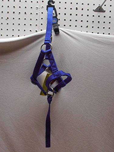 - Tough-1 Adjustable Suckling Foal Nylon Halter with Removable Nylon Catch Strap. (Royal)