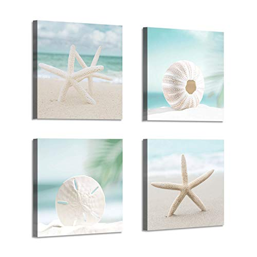 seashell pictures - 5