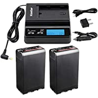 Kastar Fast Charger and Battery (2X) for Sony BP-U90 PXW-FS7/FS5/X180 PMW-100/150/150P/160 PMW-200/300 PMW-EX1/EX1R PMW-EX3/EX3R PMW-EX160 PMW-EX260 PMW-EX280 PMW-F3/F3K/F3L HD422 PHU-60K PXW-Z450