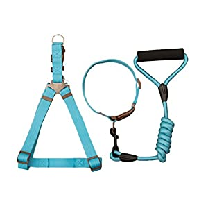 Freerun Pet Braided Nylon Dacron Dog Leash with Adjustable Harness and Collar 3 Pieces Set - Sky Blue, S