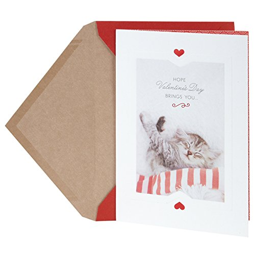 Hallmark Valentine's Day Greeting Card (Sleeping Cat)
