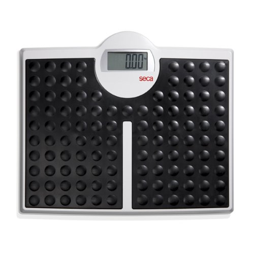 seca 813 High Capacity Digital Flat Scale for Individual Patient Use.
