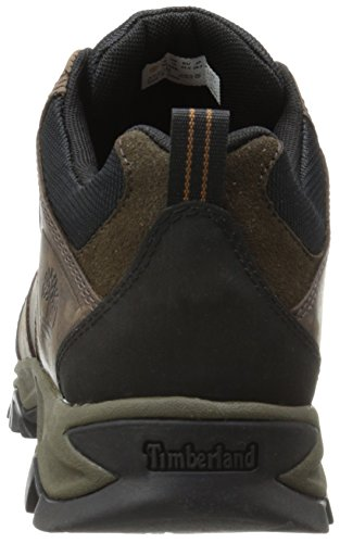 Timberland Trailwind 2 0 Ftp Mt Maddsen Low, Multisports outdoor homme, Marron (Brown), 45