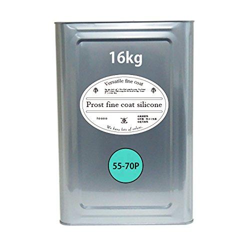 屋外用 多目的用 水性塗料 55-70P ターコイズブルー 16kg/艶消し 内装 外装 壁 屋内 ファインコートシリコン つや消し 多用途 B0779RL6ZB ターコイズブルー 16kg