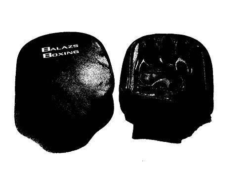 Balazs Pro Leather Focus Mitts by Balazs
