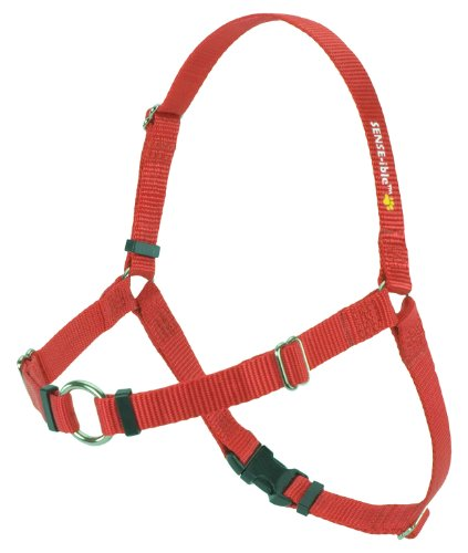 SENSE-ible No-Pull Dog Harness – Red Medium/Large (Wide), My Pet Supplies