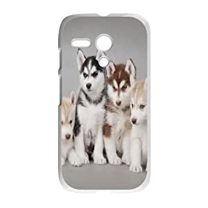 Generic Case Huskies For Motorola G A2WQ342296