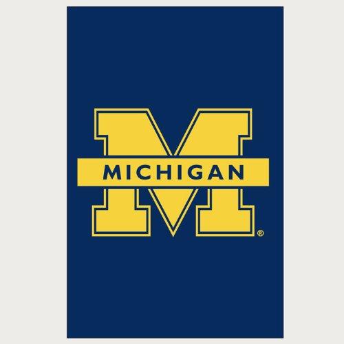 Michigan State 44x28 Applique Banner - 3
