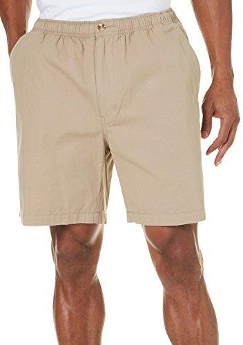 Windham Pointe 7 Inch Inseam Elastic Waist Shorts X-Large Chinchilla - Bealls Elastic Waist Shorts